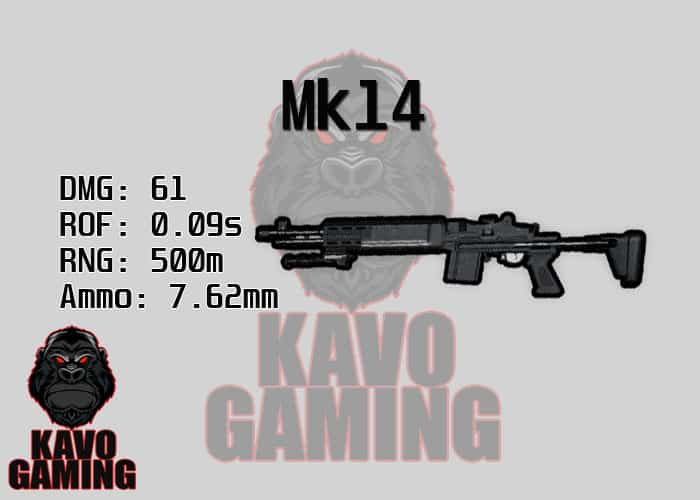 Stats for the Mk14 in PUBG