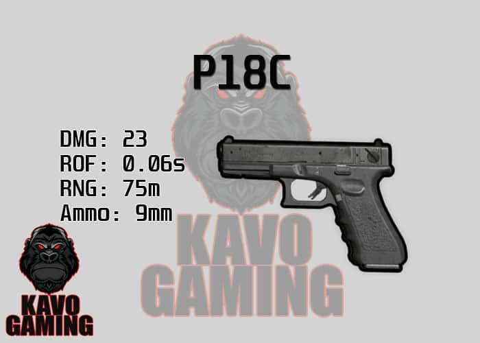 Stats for the P18C in PUBG