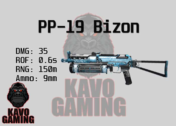 Stats for the Bizon in PUBG