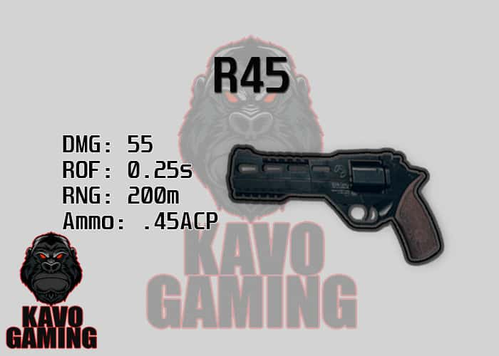 Stats for the R45 in PUBG
