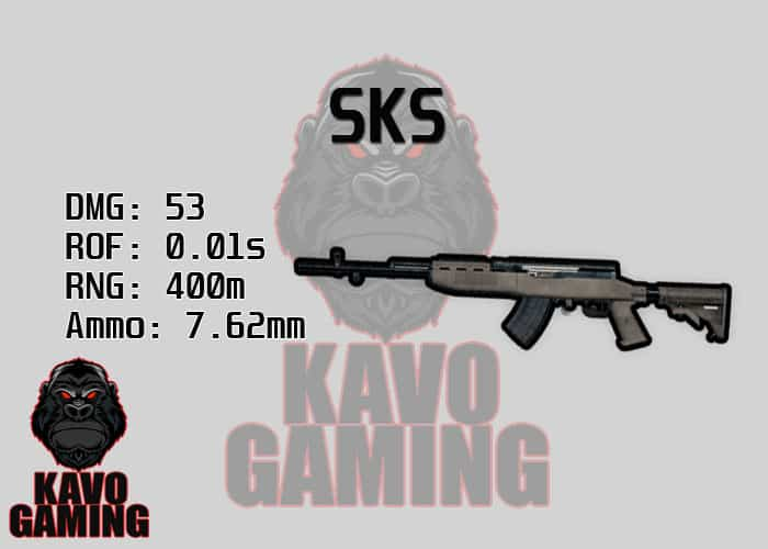 Stats for the SKS in PUBG