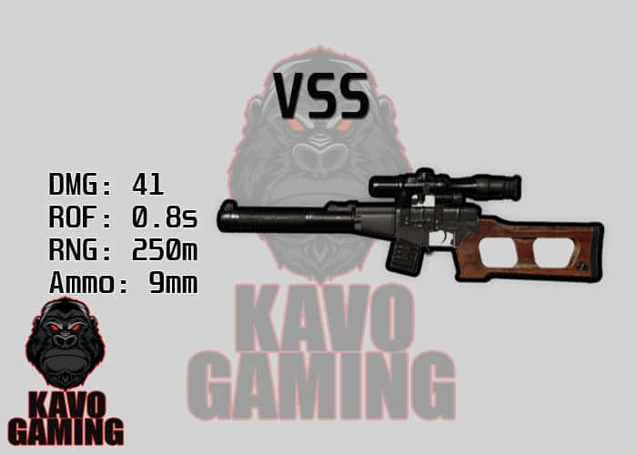 Stats for the VSS in PUBG